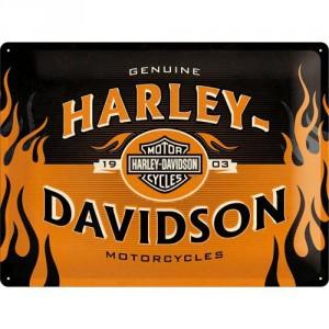 Plaque en métal 30 X 40 cm logo Harley-Davidson dans les flammes
