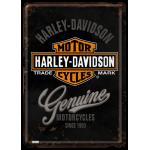 Plaque en métal 14 X 10 cm Harley-Davidson : Genuine